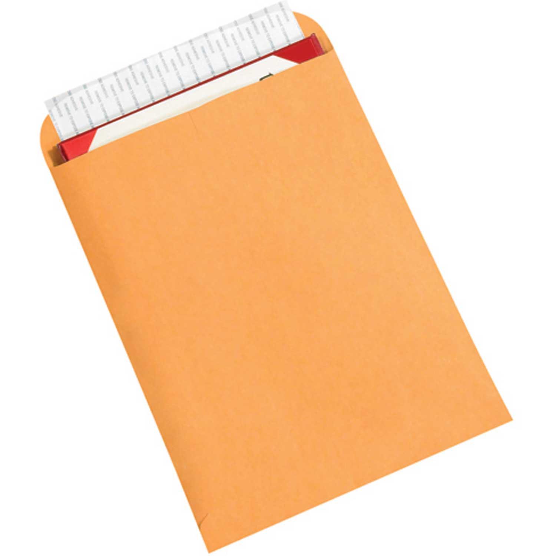 Redi-Strip Flat Self-Seal Envelopes - 9x12  - Case of 500 - Kraft, Lot of 1