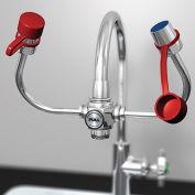 GUARDIAN EyeSafe-X Faucet-Mount Eyewash