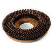 """Powr-Flite SF215 15"""" Poly Shower Feed Brush With Clutch Plate For Carpet"""