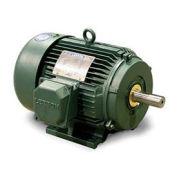 Leeson 171633.60, 20 HP, PEM, 208-230/460V, 1775 RPM, 256T, TEFC, Rigid