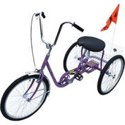Industrial Tricycle, Single Speed, Coaster Brake, Purple