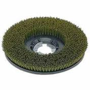 "Bissell® 17"" Nylon Grit Brush - Green/Gray"