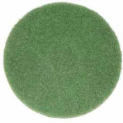 """Oreck® 12"""" Cleaning Pad, Green"""