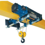 RH-Advantage Wire Rope Hoist, Dual Speed Hoist and Trolley, 33' Lift, 5 Ton, 230V
