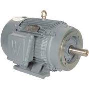 Worldwide Electric T-Frame Motor PEWWE20-12-286TC, TEFC, GP, 3 PH, Rigid-C, 286TC, 26.3 FLA