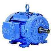 WEG NEMA PEM 00209ET3E213T-W22, 900 RPM, 2 HP, TEFC, 208-230/460 V, 213T, 3 PH