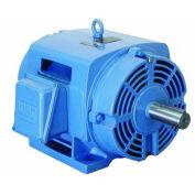 WEG NEMA PEM 01012OT3H256TC, 1200 RPM, 10 HP, ODP, 575 V, 256TC, 3 PH