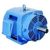 WEG NEMA PEM 01512OT3E284TC, 1200 RPM, 15 HP, ODP, 208-230/460 V, 284TC, 3 PH