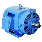 WEG NEMA PEM 03036OT3E284TS, 3600 RPM, 30 HP, ODP, 208-230/460 V, 284TS, 3 PH