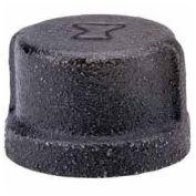"1"" Black Malleable Cap, Lead Free, 150 PSI"