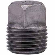 "1-1/4"" Black Malleable Square Head Plug, Lead Free, 150 PSI"