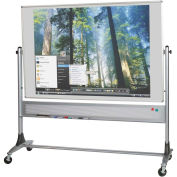 Platinum Reversible - Evolution Projection Surface - Matte Gray - 4X6 ft.