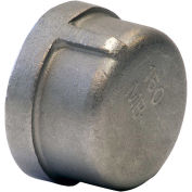 "1"" Cap, 304 Stainless Steel, FNPT, Class 150, 300 PSI"
